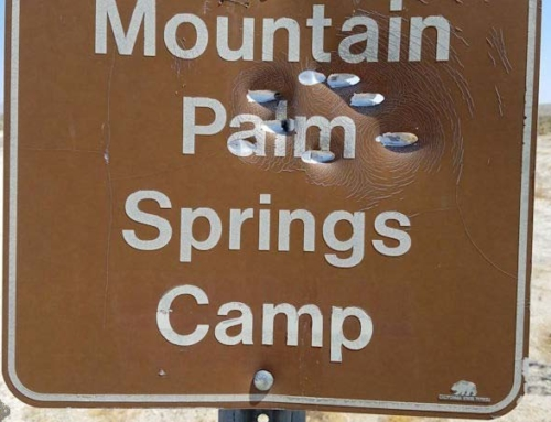Mountain Palm Springs Campground