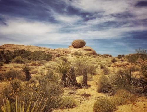 RV Camping in Joshua Tree for Free